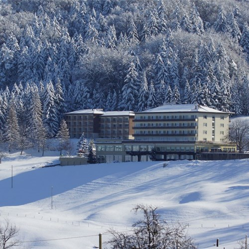 bad-ramsach-quellhotel_laeufelfingen_other-38.jpg