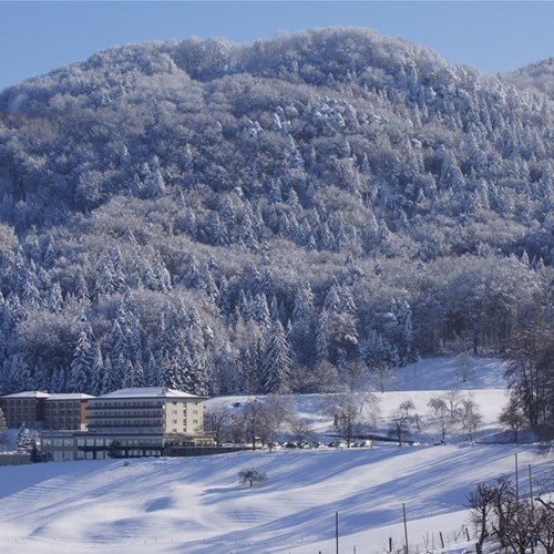 Bad-Ramsach-Quellhotel_Laeufelfingen_Winter_7.jpg